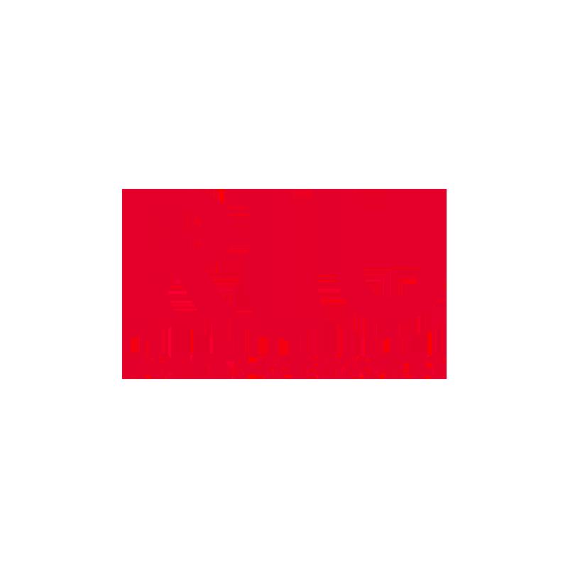 riu hotels&resorts